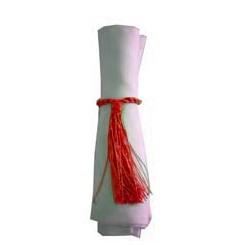 Napkin Tassel Red